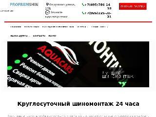 www.profremshin.ru справка.сайт