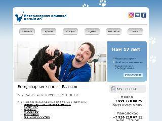 bazilio-kit.ru справка.сайт
